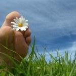 Acerca de los Hábitos: Consejos para mejorarlos