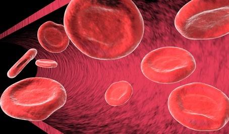 Globulos rojos - Anemia