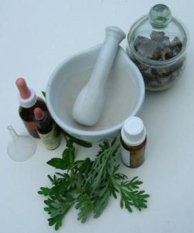 Fitoterapia. Las plantas medicinales a nuestro servicio