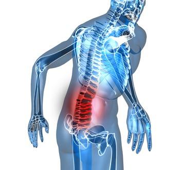 La zona lumbar de la columna vertebral