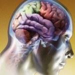 El Sexto Sentido, la Intuición o Percepción Extrasensorial
