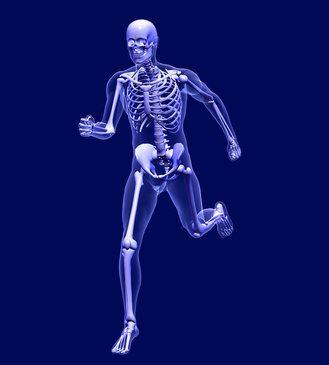 Alimentemos los huesos, para que estén sanos
