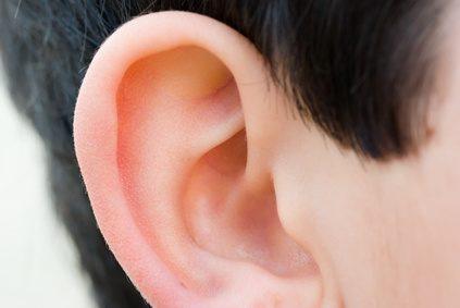 El Oído Externo ( la Oreja ) y sus trastornos