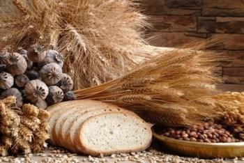 hidratos de carbono en la alimentación